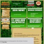 Акции Bingobongo